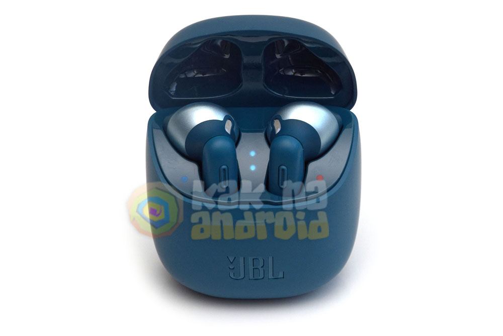 TWS наушники JBL Tune 220 - инструкция на русском - внешний вид